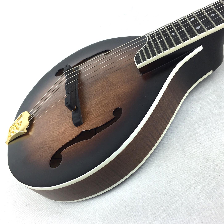 gold tone gm 6 6 string acoustic electric mando guitar. Black Bedroom Furniture Sets. Home Design Ideas