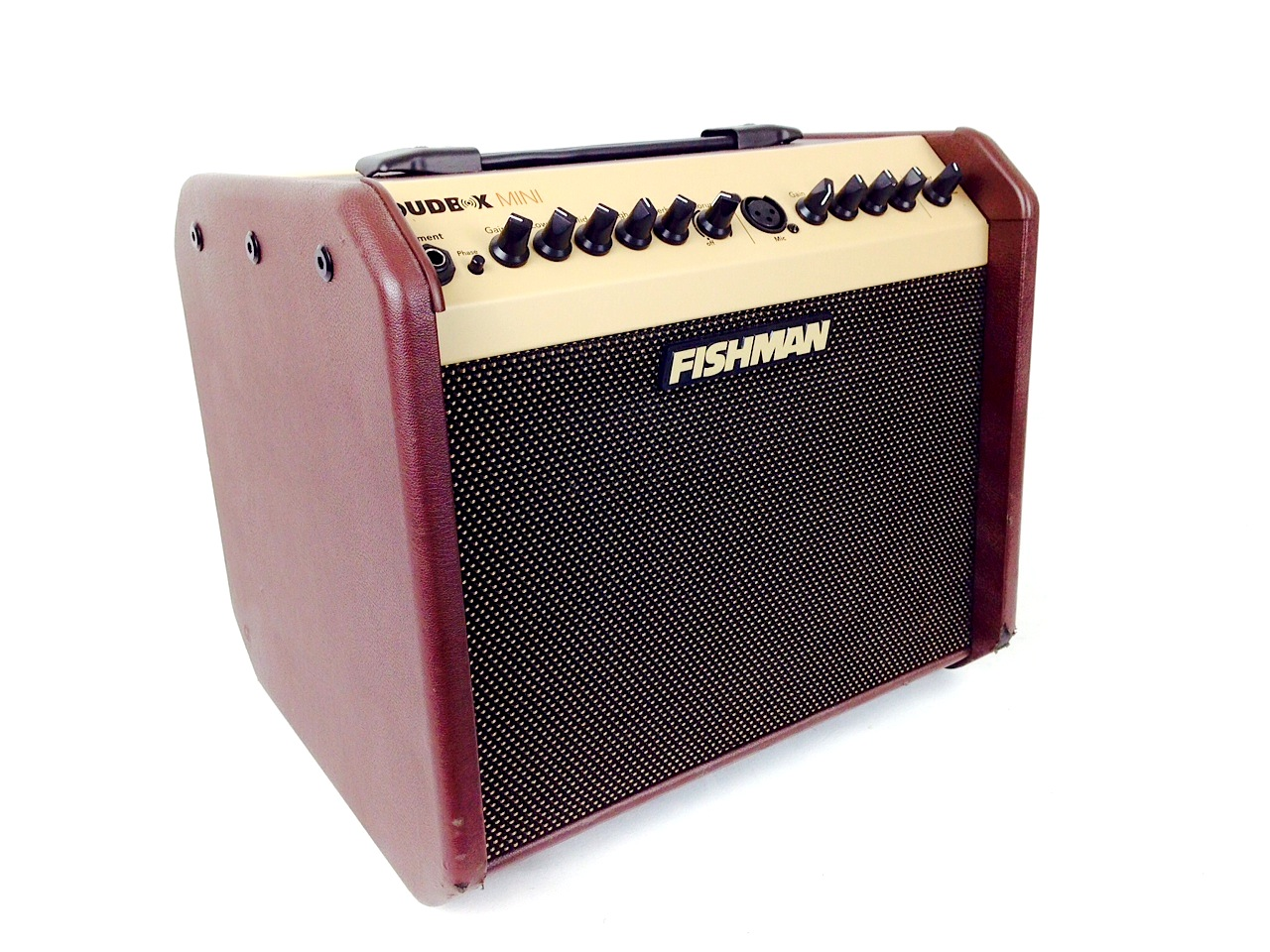 fishman loudbox mini acoustic guitar amplifier. Black Bedroom Furniture Sets. Home Design Ideas